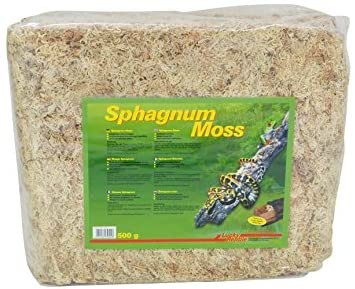 Lucky Reptile Sphagnum-Moos 500g