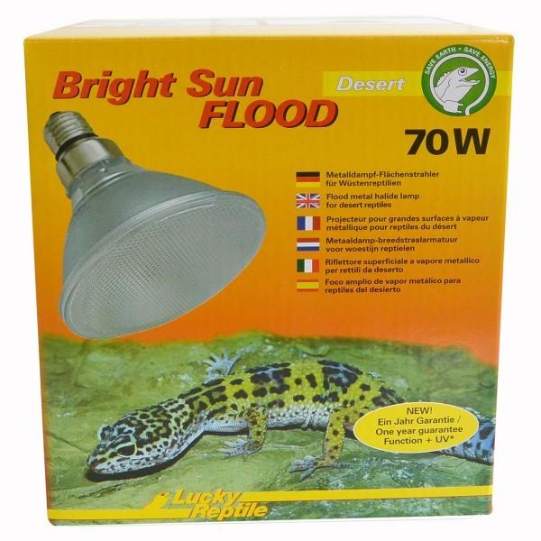 Lucky Reptile Bright Sun FLOOD Desert 70 Watt
